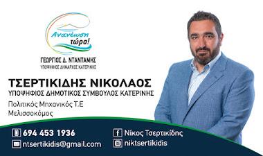 ΤΣΕΡΤΙΚΙΔΗΣ ΝΙΚΟΛΑΟΣ