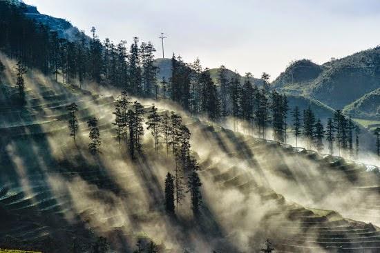 hình ảnh spa trong sương mù