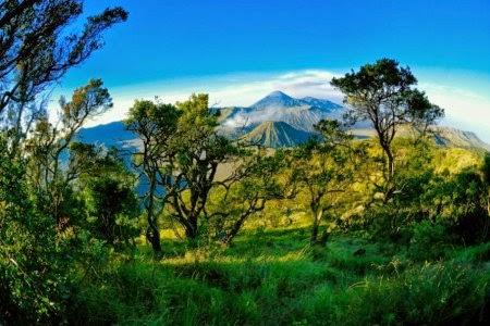 Alamat Lokasi Obyek Wisata Gunung Bromo