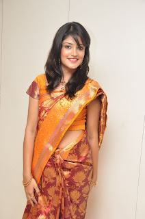Model krupali in silk saree at cmr ashadam event 008.jpg