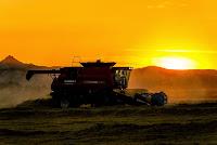 Appreciating the American Farmer