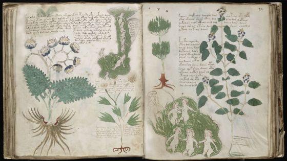 El libro imposible Códice Voynich, clonado... | L@ S@l@m@ndr@ de ...