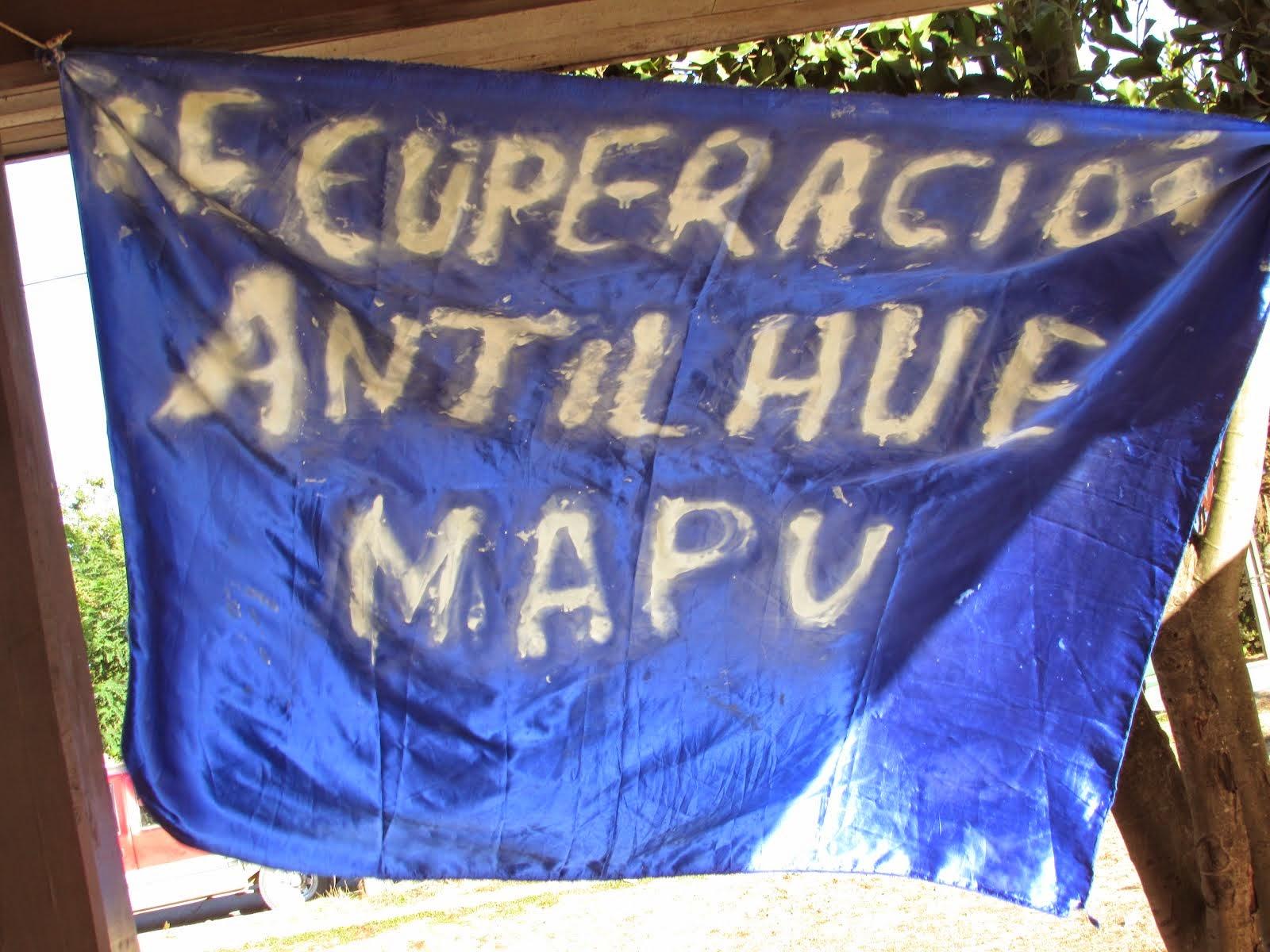 COMUNIDAD MAPUCHE DE ANTILHUE, INICIAN PROCESO DE RECUPERACION DEL FUNDO ANTILHUE EN LANCO