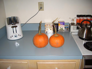Making pumpkin pie from scratch