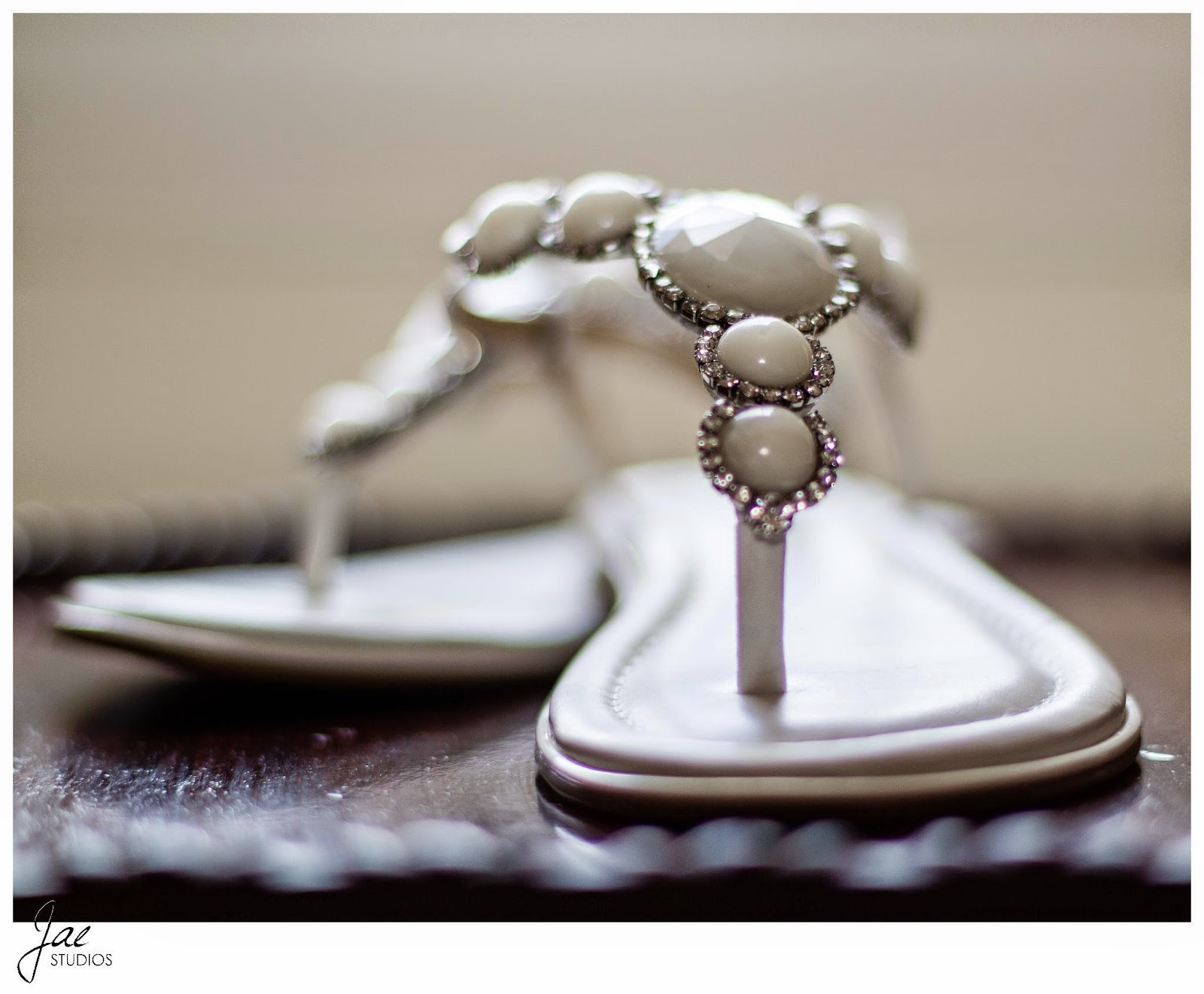 Jonathan and Julie, Bird cage, West Manor Estate, Wedding, Lynchburg, Virginia, Jae Studios, pearl, shoes, diamonds