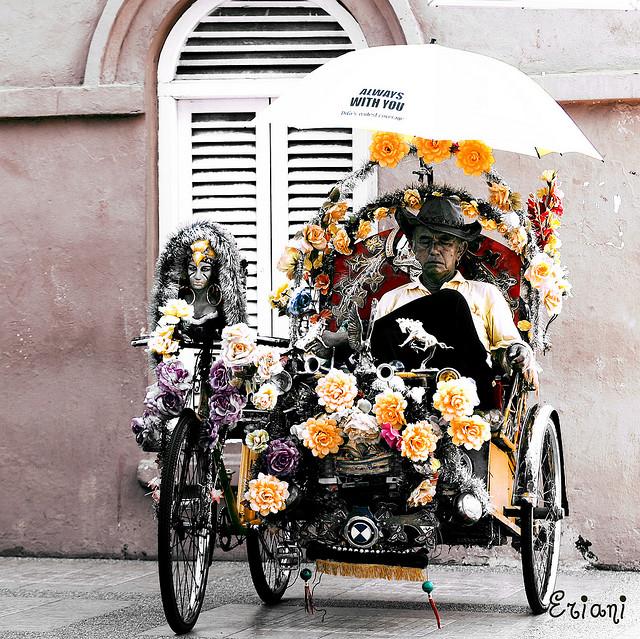 15 fotos de bicicletas com lindas floreiras