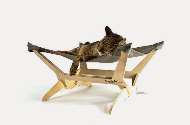 Kitty Lounger | Exclusively Cats Veterinary Hospital, Waterford, MI