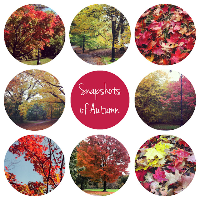 Not Without Heels: Snapshots of Autumn