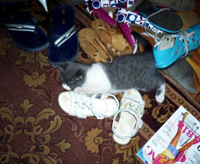Играем с обувью