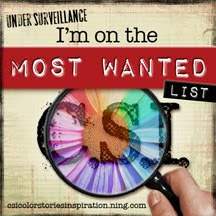 I was on the most wanted list at CSI June 2012