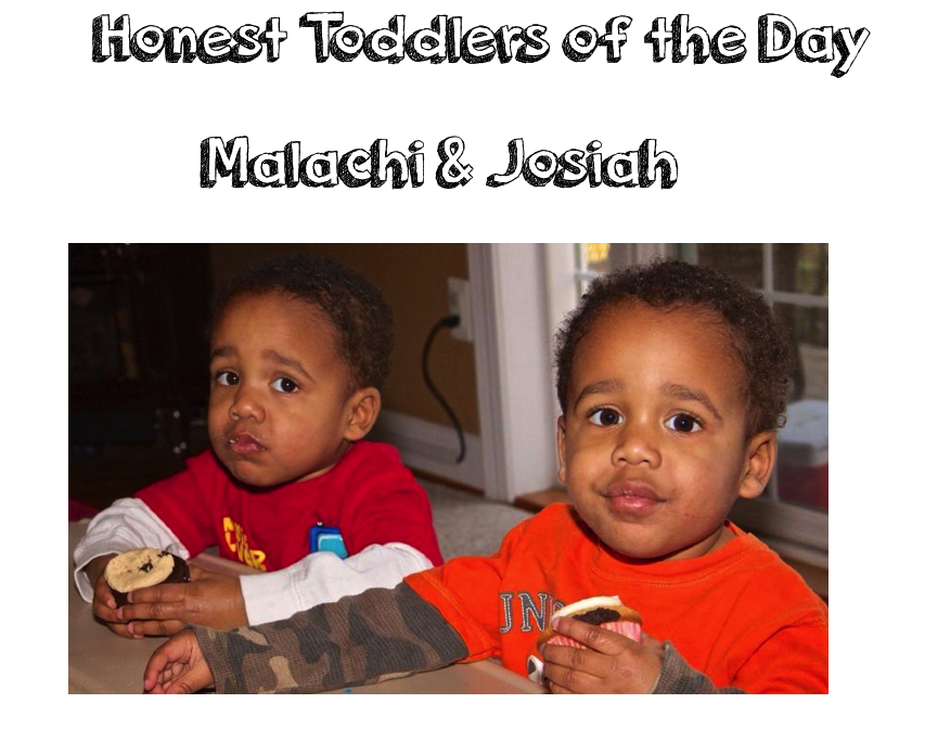 honest toddler: February 2014
