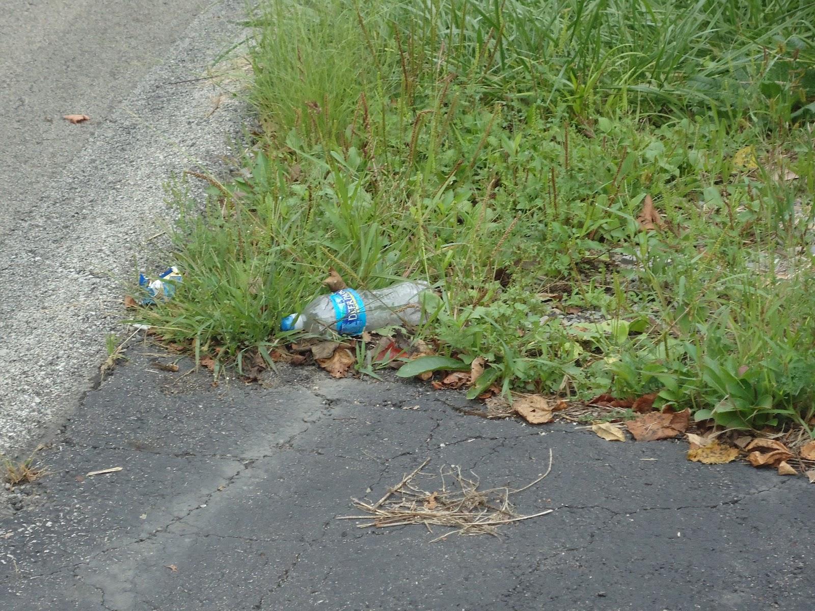 litter along road