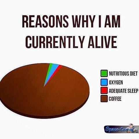 funny statistics humor pics