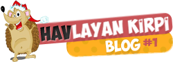 Havlayan Kirpi Logo