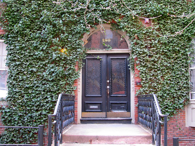 Door-with-Ivy-in-Providence-Rhode-Island