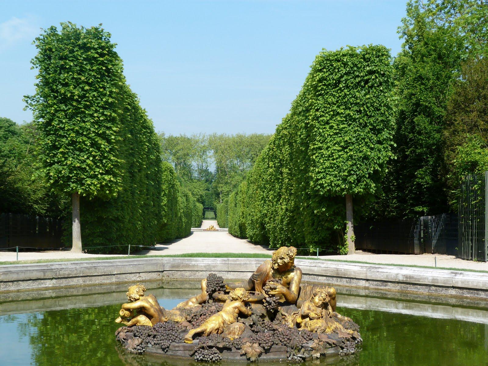 Verdure archives emotion wizardemotion wizard for Jardin versailles