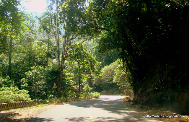 nilambur gudalur route