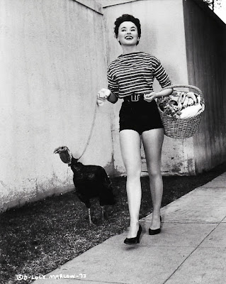 Lucy Marlow walking turkey