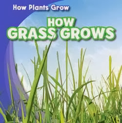 bookcover of WATCH GRASS GROWS  (Watch Plants Grow!)  by Kristen Rajczak