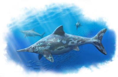 Ichtyosauria Acamptonectes