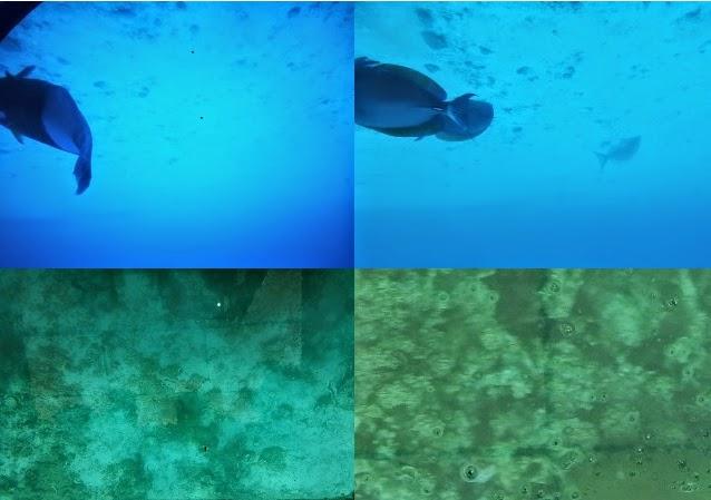 Mauritius - submarine