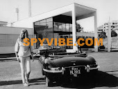 Spy Vibe