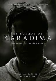 El bosque de Karadima (2015)