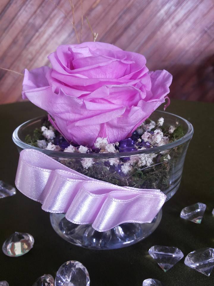 Rosas Rosadas Naturales Preservadas ¡Duran 4 Años! Santa Ana, El Salvador