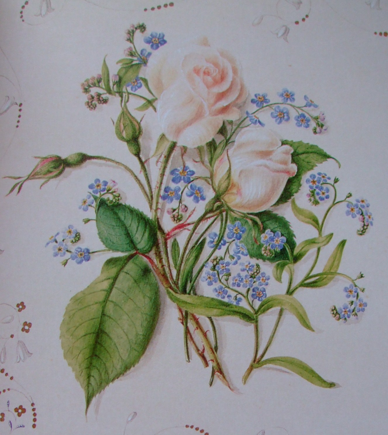 Victorian Flower Drawings