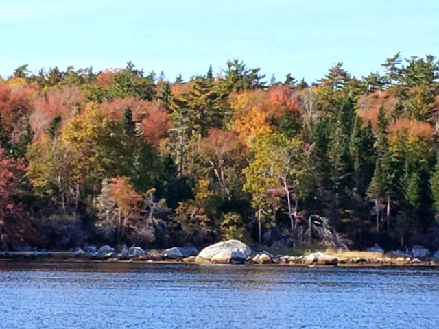 Fall Colours, Nova Scotia, Shelburne