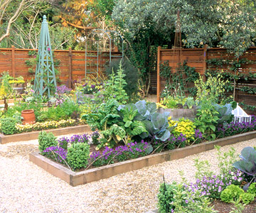 & Desain Taman Rumah