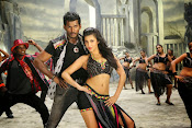 Pooja movie photos gallery-thumbnail-6