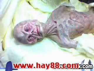 Clip mổ xác người ngoài hành tinh | hay88com