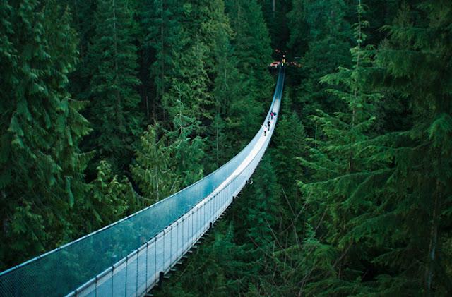 capilano bridge vancouver columbia