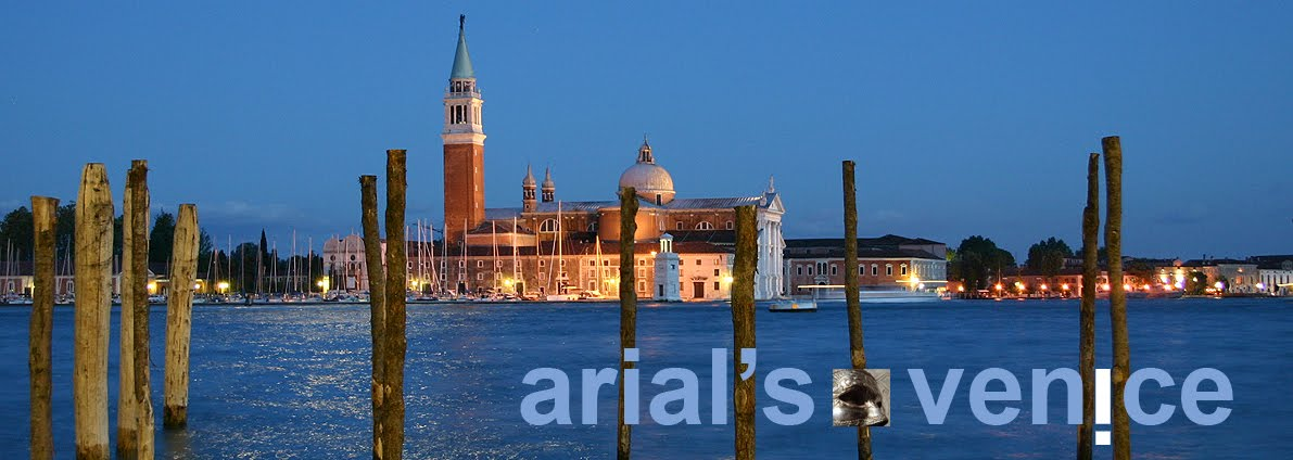 arial venice
