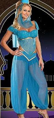Arabian Belly Dancer Costume