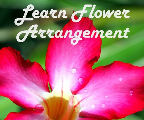 Flower Arrangement Made Simple