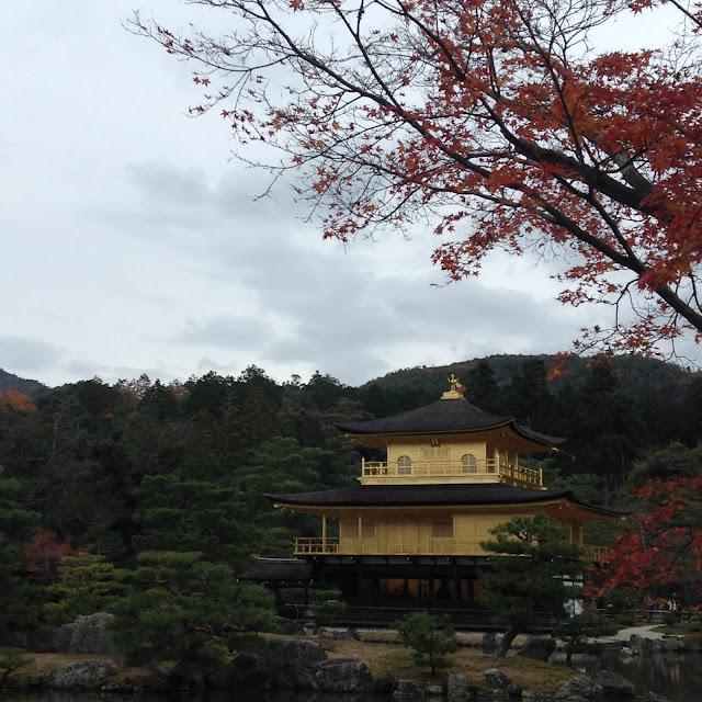 Momiji, Kinkakuji