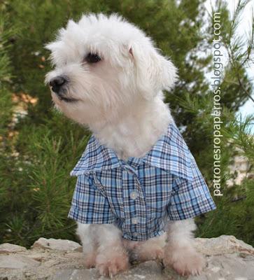 Mimi y Tara   Patrones de ropa para perros