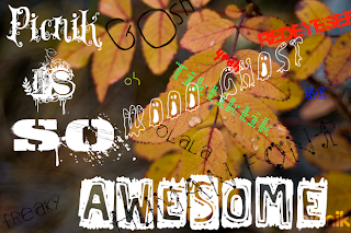 picnik photo filled with example font type