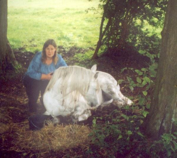 Chiwa liegt mit Hufrehe (Herbst 2003)