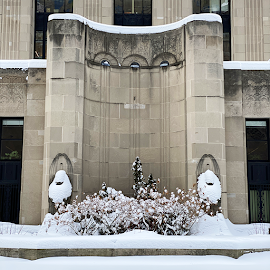 Victor Lawson Memorial Fountain's snowbound griffins.