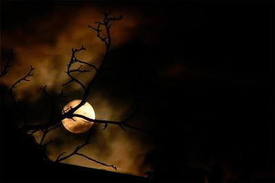 صور خسوف القمر , القمر صور