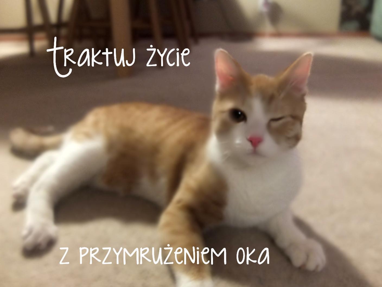 http://2.bp.blogspot.com/-0vEVZeMyQJM/UVsxhoPsvTI/AAAAAAAACFY/hSb1BWVrcy0/s1600/DSCF3777.JPG