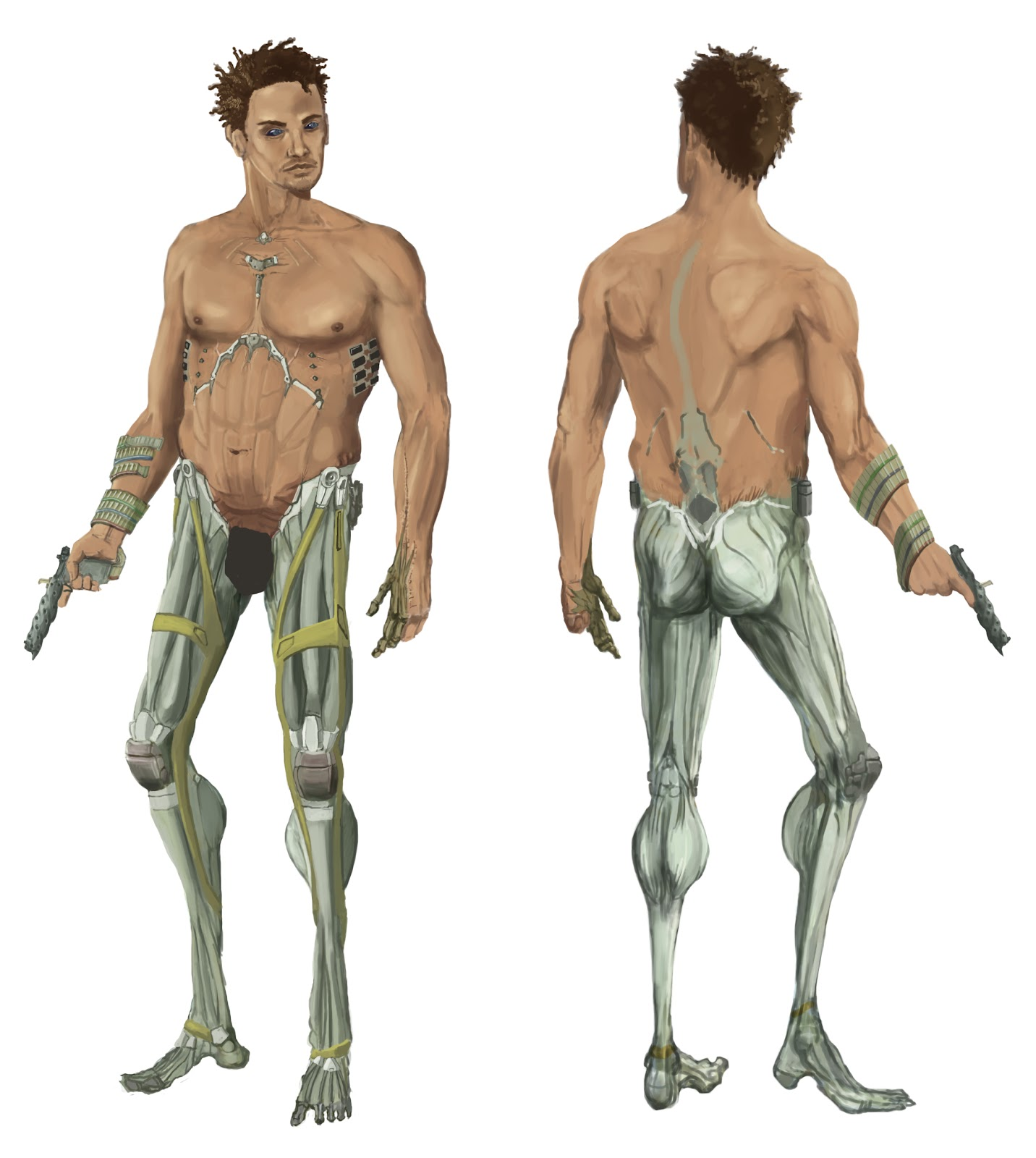 Images For > Muscular System For Kids Without Labels