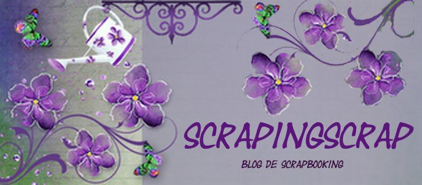 scraping scrap