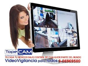 VIGILANCIA POR INTERNET
