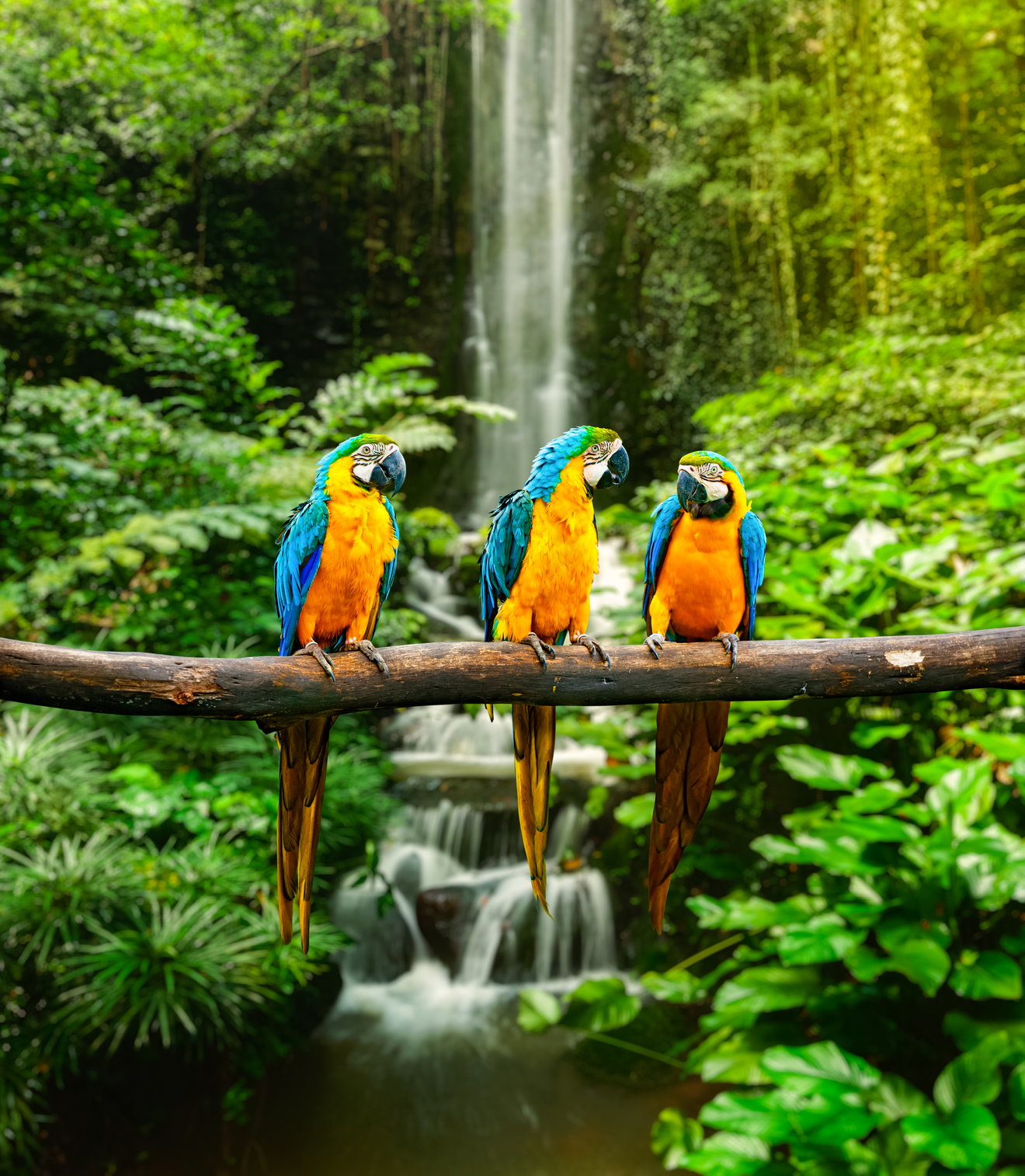 BANCO DE IMGENES 12 fotos de paisajes naturales que tienes que ver