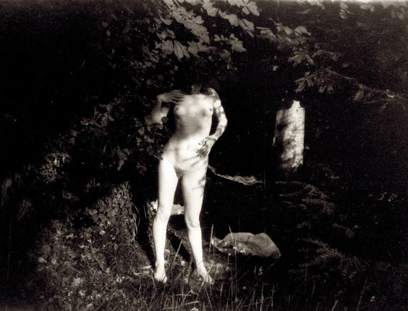 Assez le promeneur du 68: Pierre Bonnard, peintre et photographe JJ59