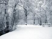 #6 Winter Wallpaper